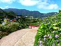 Teneriffa – Mercedeswald – Anaga – Taborno - panoramio.jpg