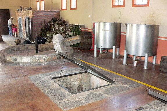 A tahona, large stone wheel, at the Hacienda Dona Engracia that was used to crush the pina. Large, modern distilleries commonly complete this process mechanically. Tequila factory.jpg