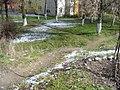 TgMures - Tudor - spring snow green & white - panoramio.jpg