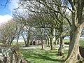 The Daisy covered graveyard of Eglwys Peirio Sant - geograph.org.uk - 1247980.jpg