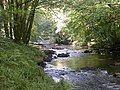 The River Tavy - geograph.org.uk - 45426.jpg