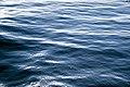 The Sea (19431700598).jpg