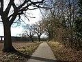 The Trans Pennine Trail towards Sim Balk Lane, York - geograph.org.uk - 2265778.jpg