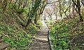 The Veil View Garden, Barrmill, North Ayrshire - View from the south.jpg