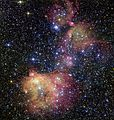 The glowing gas cloud LHA 120-N55 in the Large Magellanic Cloud.jpg