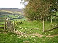The old road - downhill into Glan Cownwy - geograph.org.uk - 1508024.jpg
