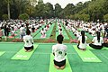 The participants in the mass performance of Common Yoga Protocol, on the occasion of the 4th International Day of Yoga -2018, at Lodhi Garden, in New Delhi on June 21, 2018 (3).JPG