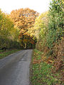 The road to Hope Mansell - geograph.org.uk - 603254.jpg