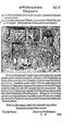 Thurnierbuch (Rüxner) 099.png