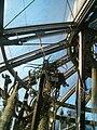 Tillandsia duratii BotGardBln01102011B.JPG