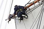 Tonnerres de Brest 2012 - La Recouvrance - Le gabier - 209.jpg