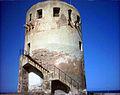 Torre di Porto Corallo.jpg