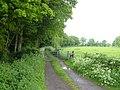 Track beside Butcher Wood, near Bethersden - geograph.org.uk - 174507.jpg
