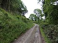 Track to Bwlch Farm - geograph.org.uk - 471147.jpg