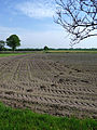 Tractor Tracks in the fields - rural landscape.jpg