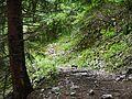 Trail, Sentiero, Wanderweg nach Navene - panoramio.jpg