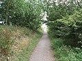 Trans Pennine Trail, Great Hatfield - geograph.org.uk - 1463960.jpg