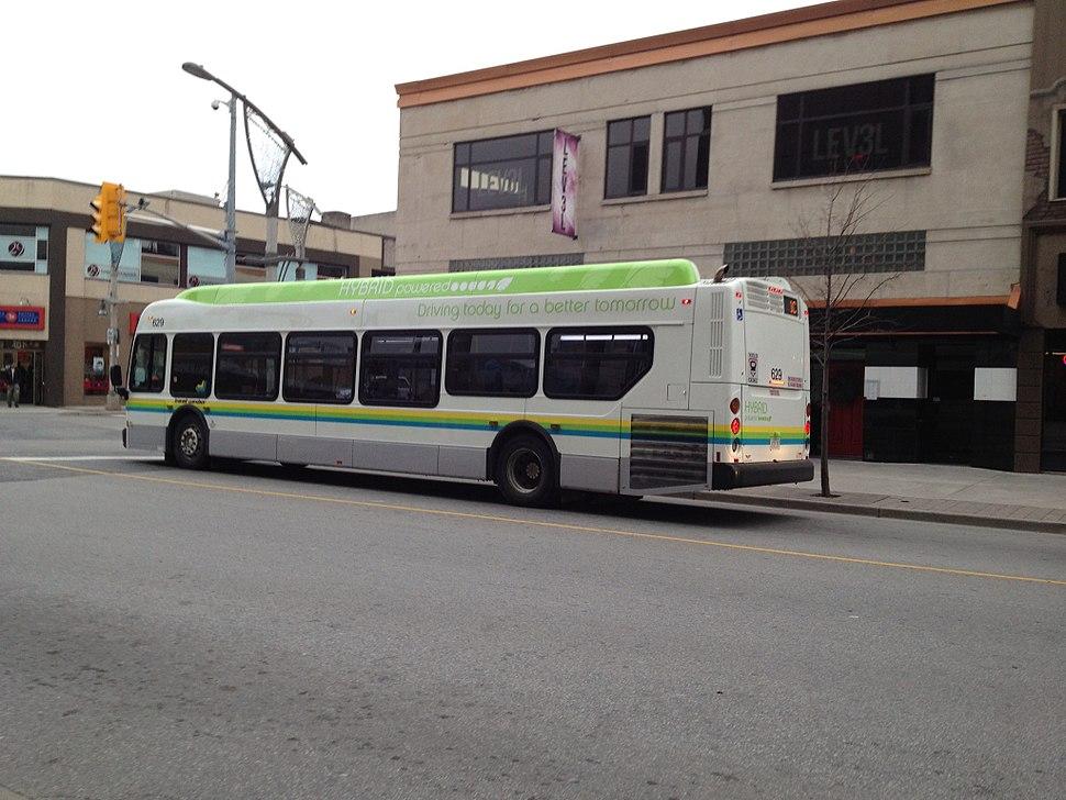 Transit Windsor 629