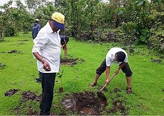 Tree planting - Tree Plantation Drive by Shree Aniruddha Upasana Foundation, Mumbai, India