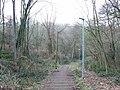 Tunbury Avenue, Walderslade Woods - geograph.org.uk - 1171578.jpg