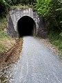 Tunnel entrance in Kaikohe, NZ.jpg