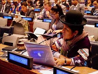 United Nations Permanent Forum on Indigenous Issues - Maria Eugenia Choque Quispe, a member of the UN Permanent Forum on Indigenous Issues, speaks at the body's 2015 session.