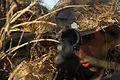 USAF snipers.jpg