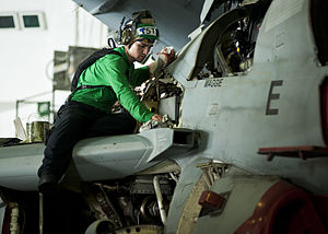 US Navy 120201-N-BT887-032 Aviation Electronics Technician 3rd Class Andrew Godwin wipes down an EA-6B Prowler from the Wizards of Electronic Attac.jpg