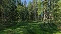 Valdai National Park asv2018-08 img02 Roschino.jpg