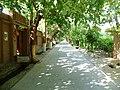 Valley of Grapes Turpan (10).jpg
