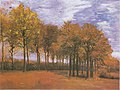Van Gogh - Herbstlandschaft.jpeg