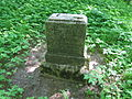 Vana-Vigala mõisa kalmistu 03.JPG
