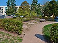 Varkausring Pirna (30670051568).jpg