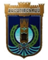 Vasilev1.png