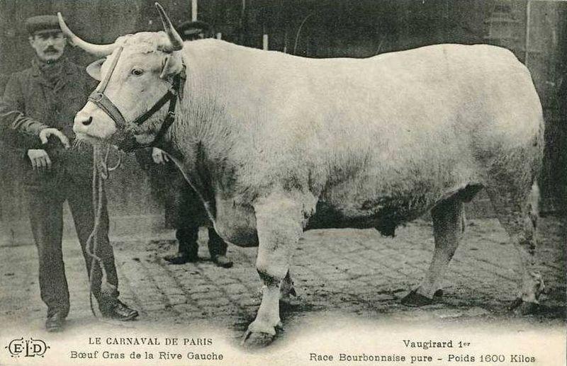 Fichier:Vaugirard 1er - 1907.jpg