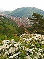 Vedere superba Brasov - panoramio.jpg