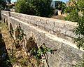 Vegetation aqueduct.jpg