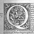 Vesalius, De humani corporis fabrica, 1543 Wellcome L0028906.jpg