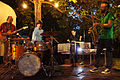 Vienna 2013-07-12 'central garden' - Blublut feat. Colin Webster 035.jpg