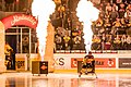 Vienna Capitals vs Fehervar AV19 -53.jpg
