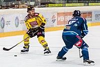 Vienna Capitals vs Fehervar AV19 -82.jpg