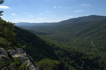 View from Buzzard Rock in George Washington Na...