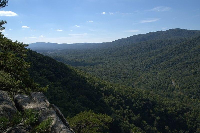 File:View from Buzzard Rock.jpg