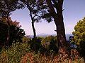 View from Villa Jovis - panoramio (2).jpg