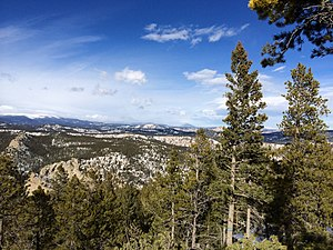 Eldora, Colorado - View of the densely forested areas surrounding Eldora Lodge at Wondervu.