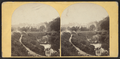 View of the Valley and Henry J. Bang's Congress Hall, from Robert N. Dennis collection of stereoscopic views.png