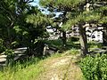 View on stone wall of Tokushima Castle.JPG