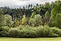 Villach Federaun Federauner Strasse Mischwald West-Ansicht 10052017 8312.jpg