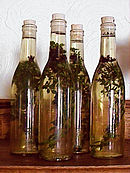 Vinegar infused with oregano.jpg