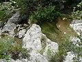 Vora el riu Glorieta a Mont-ral P1260716.jpg